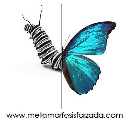 Metamorfosis Forzada